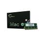 G.Skill DDR3-1600 8GB Single Channel Mac SODIMM [SQ] FA-1600C11S-8GSQ
